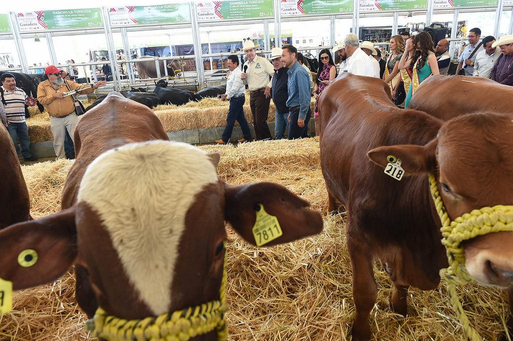 400 ganaderos participarán en la Exposición Ganadera de la FNSM