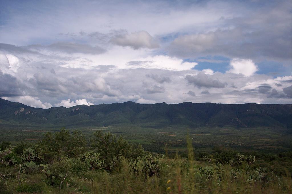 Disfruta hoy y mañana las actividades del 49 Rally Montalas Sierra Fría Aguascalientes