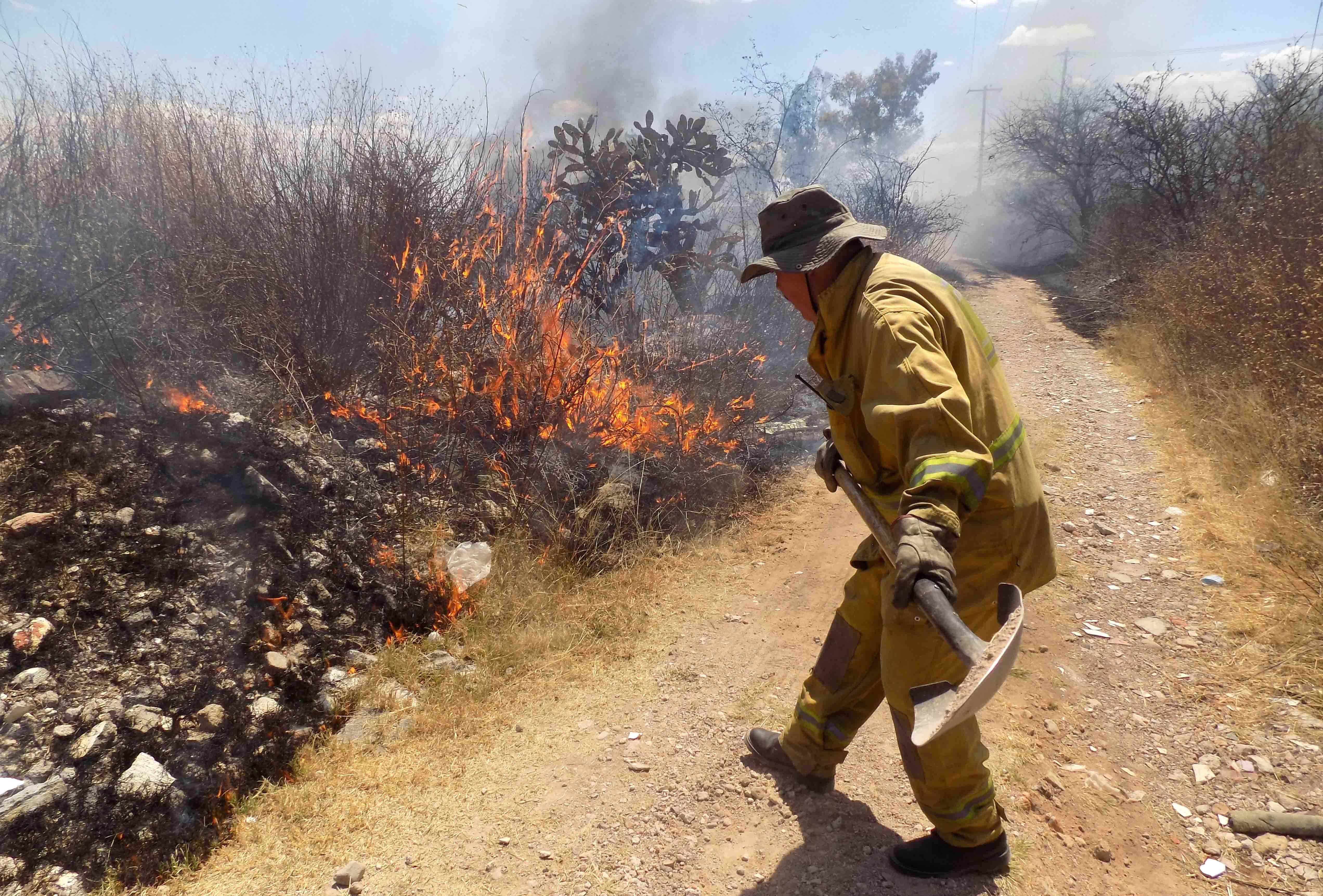 Siniestra incendio 345 hectáreas en la Sierra del Laurel