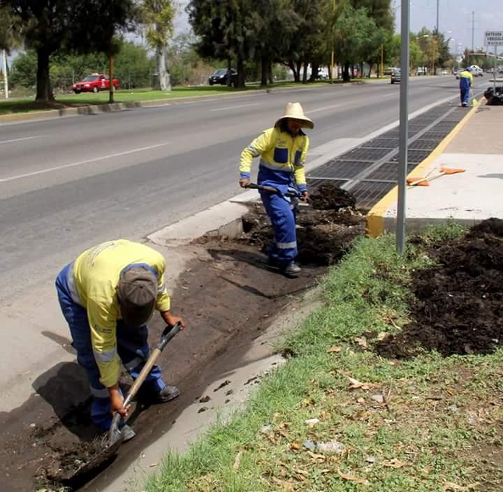 Para Evitar Inundaciones, CCAPAMA Pide no Tirar Basura en Alcantarillas