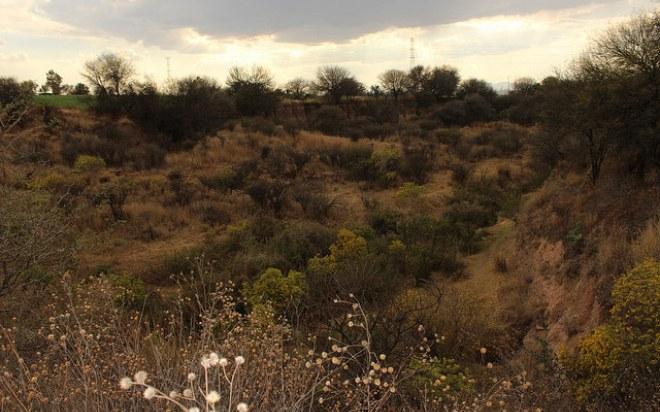 Sí se contempla la construcción de parque industrial del municipio de Aguascalientes en la cercanía del Bosque de Cobos