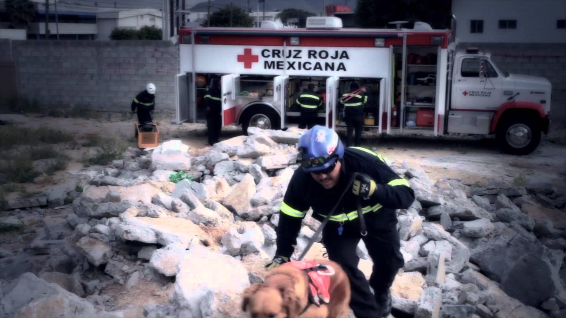 Envía Cruz Roja especialistas en búsqueda de familiares