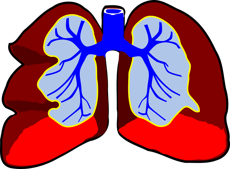 Aguascalientes, primer lugar en infecciones respiratorias