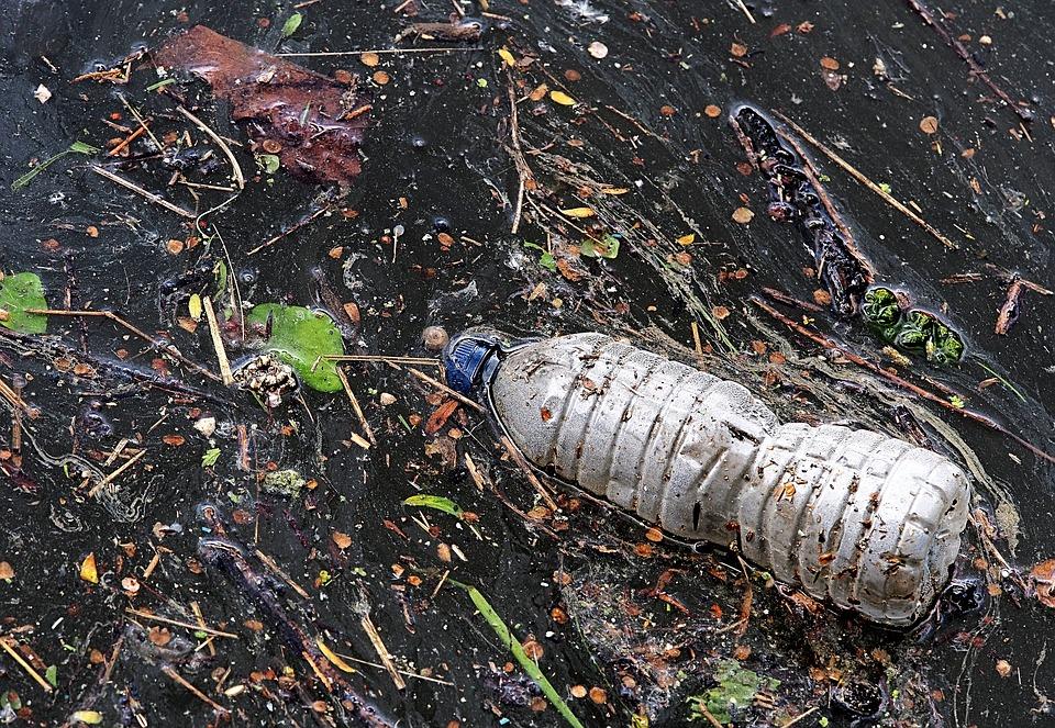 Continúan arrojando basura en arroyos del municipio: Semadesu