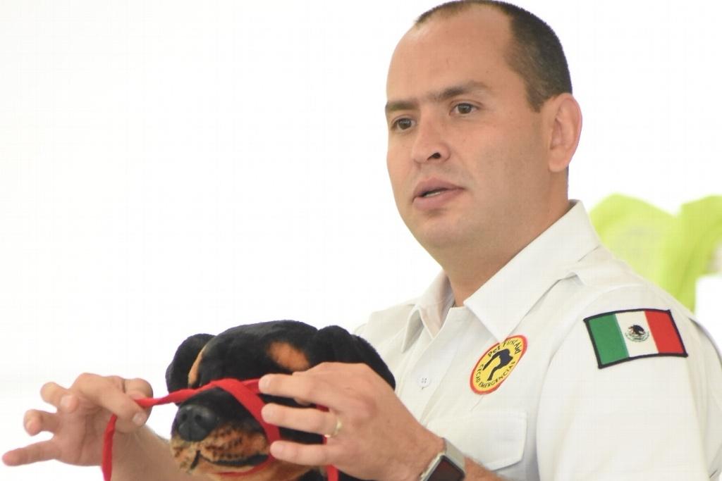 Capacitan cuerpos de emergencias para auxiliar a animales
